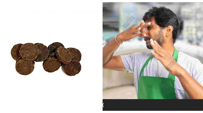 Cow dung amazon